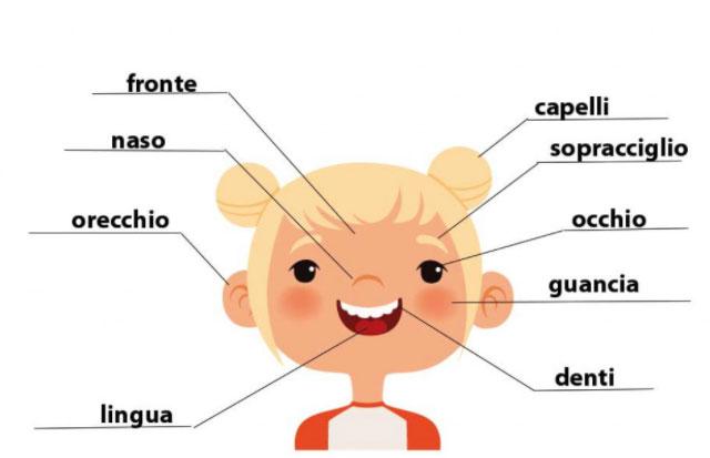 MyEdu - corso italiano per stranieri viso