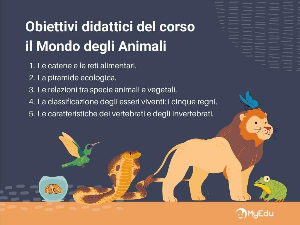 Il mondo degli animali obiettivi didattici
